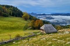 2.Jesenje-jutro-na-Tari_Miloš_Karaklić