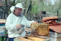 Pčelarka-Zorka-Foto-Jelena-Nešić