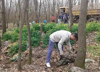 Kragujevačke šume kao smetlište