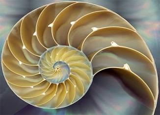 Arhimed, Nautilus i urbane mini turbine
