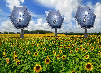 solarni suncokret