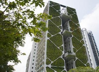 Tree House_1 app.singapore.sg