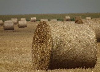 biomasa agropartner.rs
