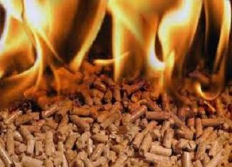 biomasa garfondapv.org.rs