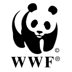 wwf climatenetwork.org
