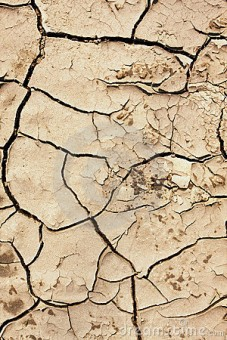 cracked-earth-14179614