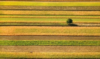 01-03-2012-poljoprivreda pks