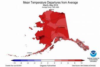 6_8_16_Andrea_CC_Alaskatemps_1050_707_s_c1_c_c