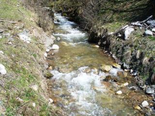 news-2015-march-kolinda_rijeka_775732748