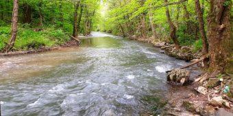 reka-mlava-priroda-ekologija_660x330