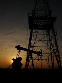 oil-1441845