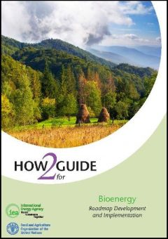 PagesdeIEA_H2G_Bioenergy_2017_WEB