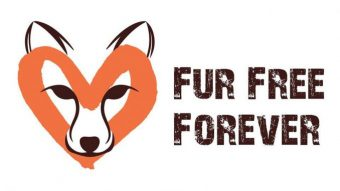 Foto: Fur free forever