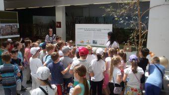 Foto: Gradska uprava za zaštitu životne sredine Novi Sad