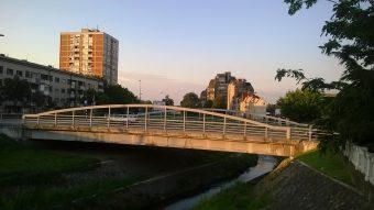 Foto: Milisav Pajević