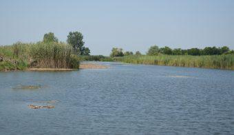 Foto: Opština Srbobran