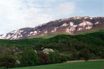 Foto: Zavoda za zaštitu prirode Srbije
