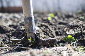 poljoprivredni-radovi